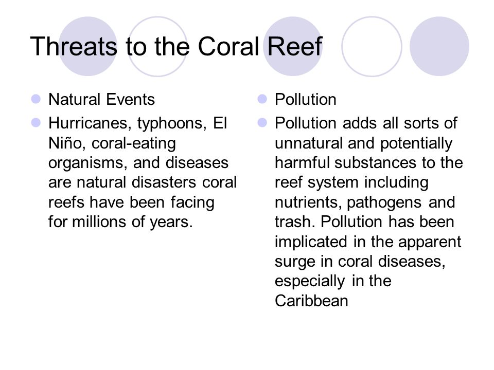 Threats to the Coral Reef