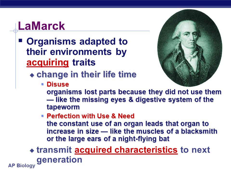 LaMarck Organisms adapted to their environments by acquiring traits
