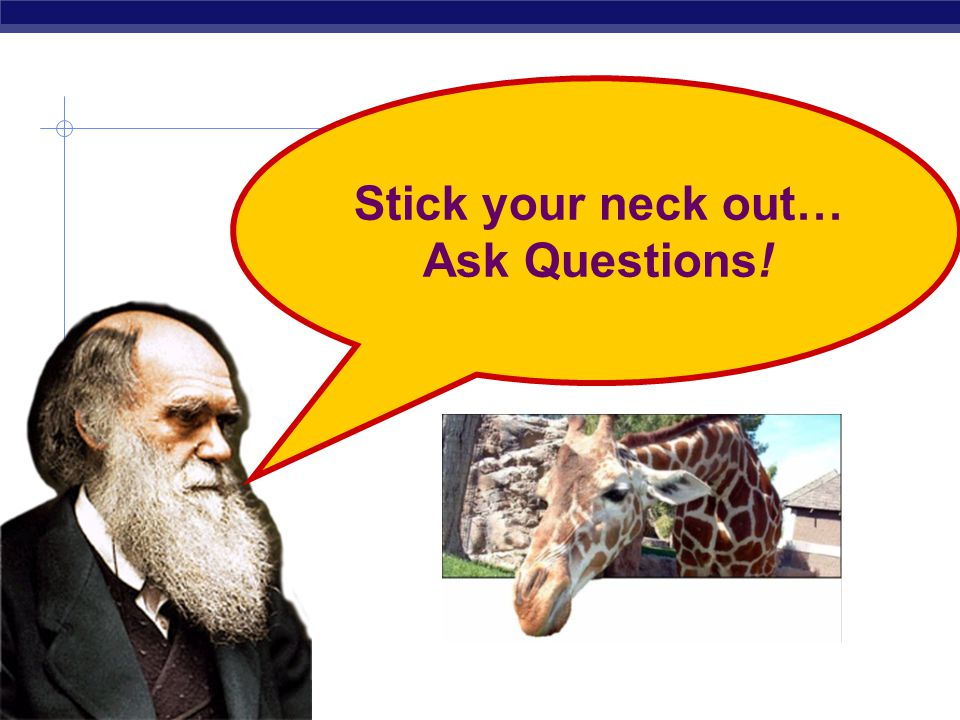Stick your neck out… Ask Questions!