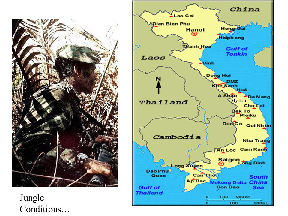 My Lai Jungle Conditions…