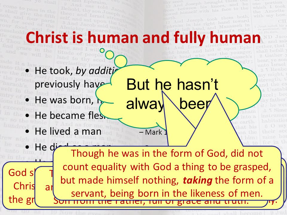 Christ is human and fully human