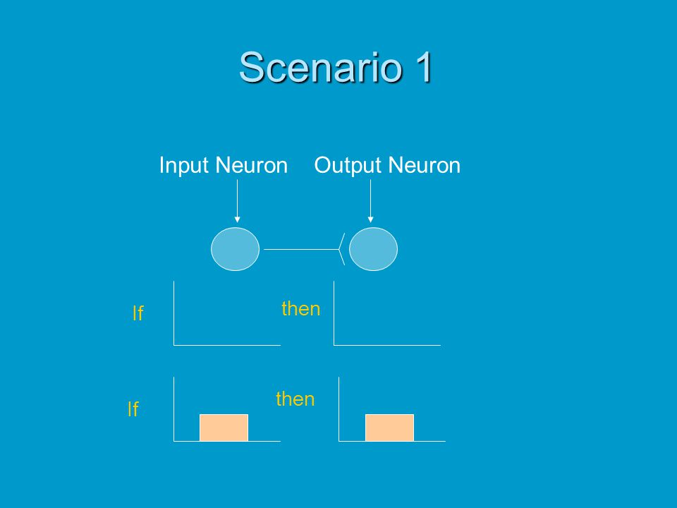 Scenario 1 Input Neuron Output Neuron then If then If