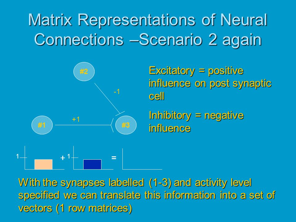 Matrix Representations of Neural Connections –Scenario 2 again