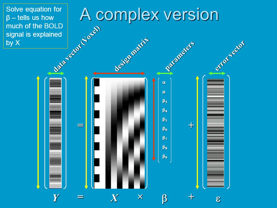 A complex version = + Y = X × b + e data vector (Voxel) design matrix