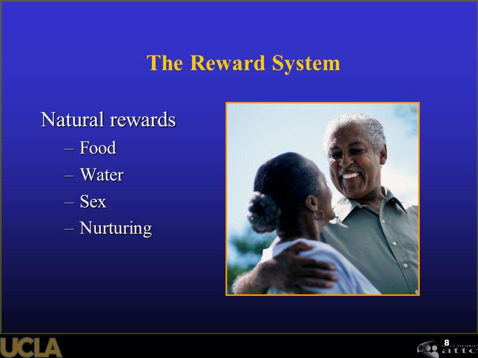 The Reward System Natural rewards Food Water Sex Nurturing