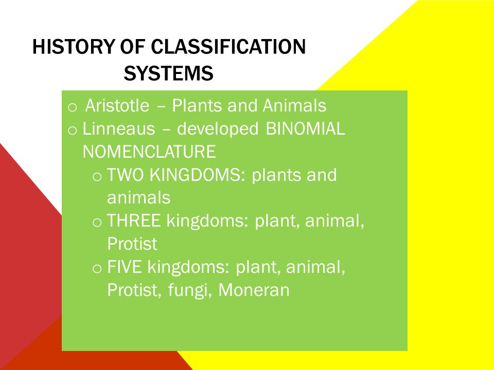 History of classification systems