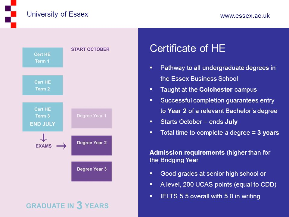 Certificate of HE Pathway to all undergraduate degrees in the Essex Business School. Taught at the Colchester campus.