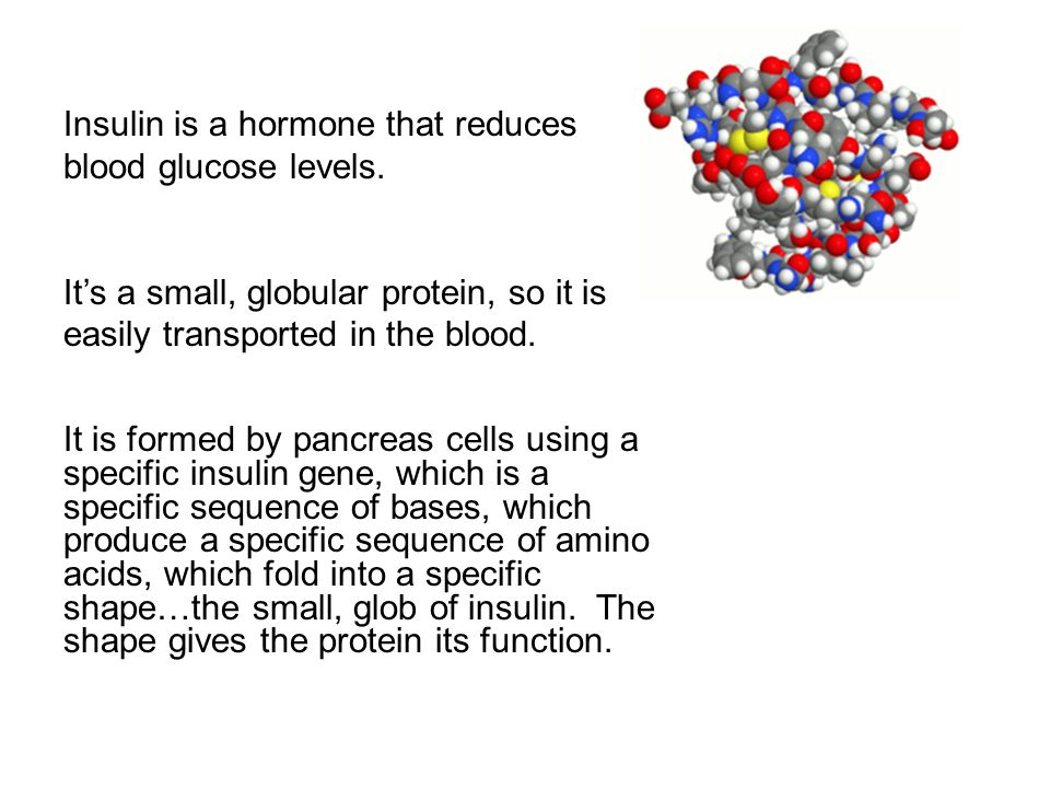 Insulin is a hormone that reduces blood glucose levels.