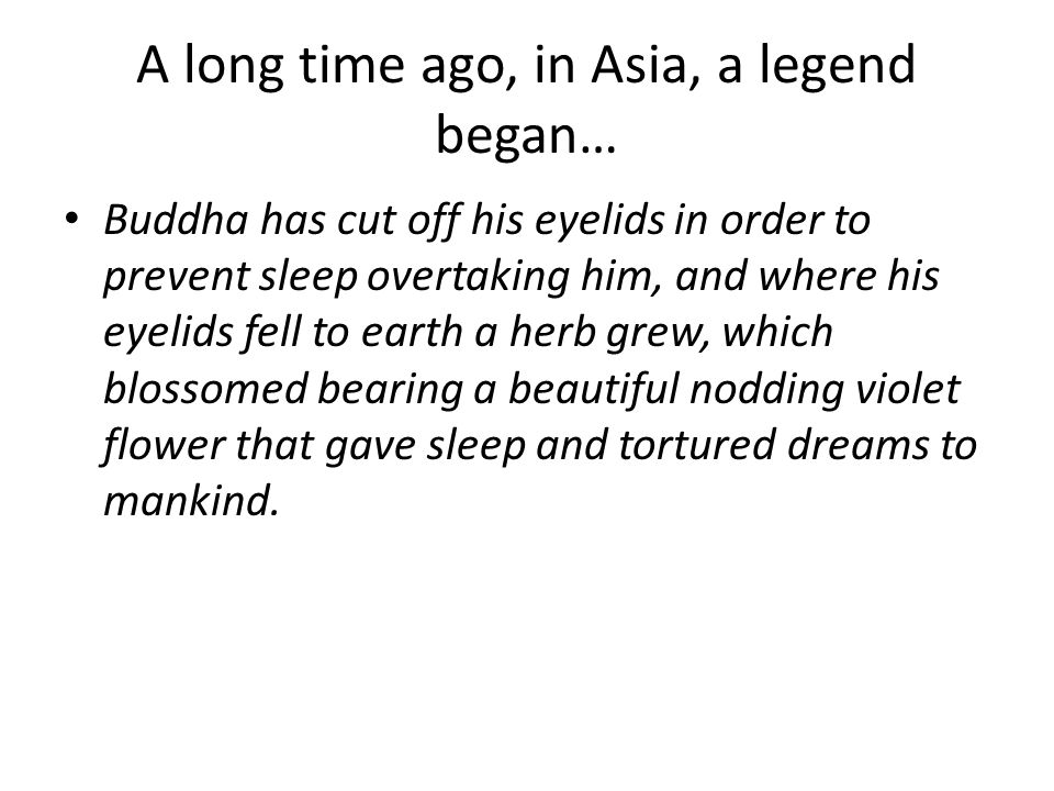 A long time ago, in Asia, a legend began…