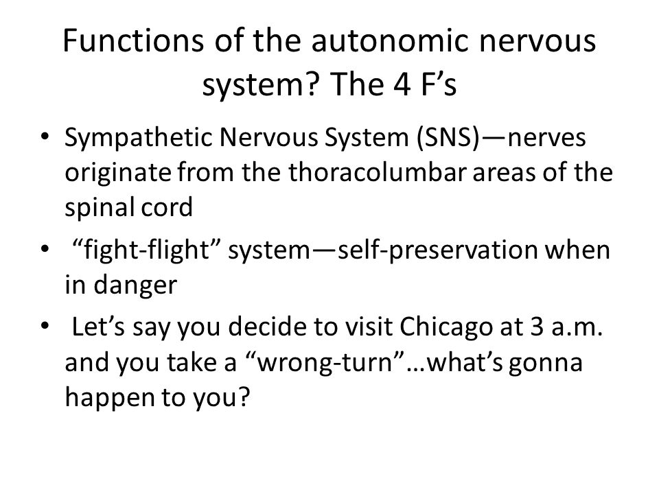 Functions of the autonomic nervous system The 4 F's