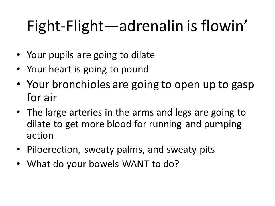 Fight-Flight—adrenalin is flowin'