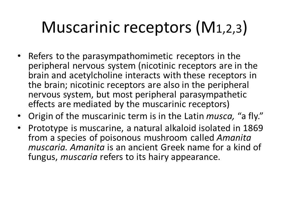 Muscarinic receptors (M1,2,3)