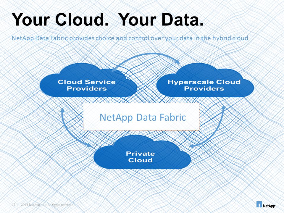 Your Cloud. Your Data. NetApp Data Fabric