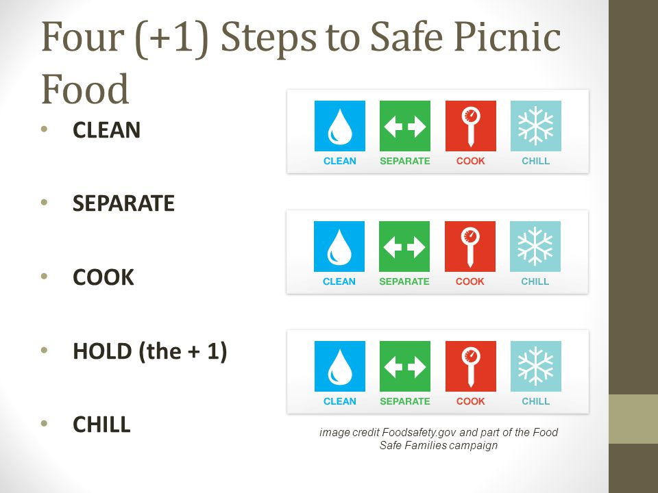 Four (+1) Steps to Safe Picnic Food