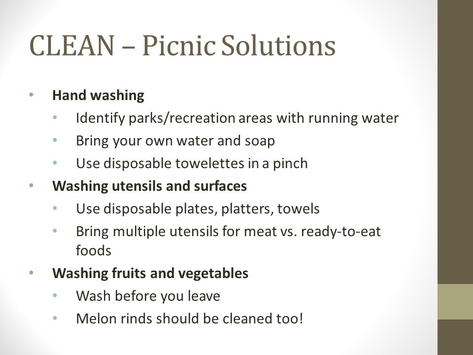 CLEAN – Picnic Solutions