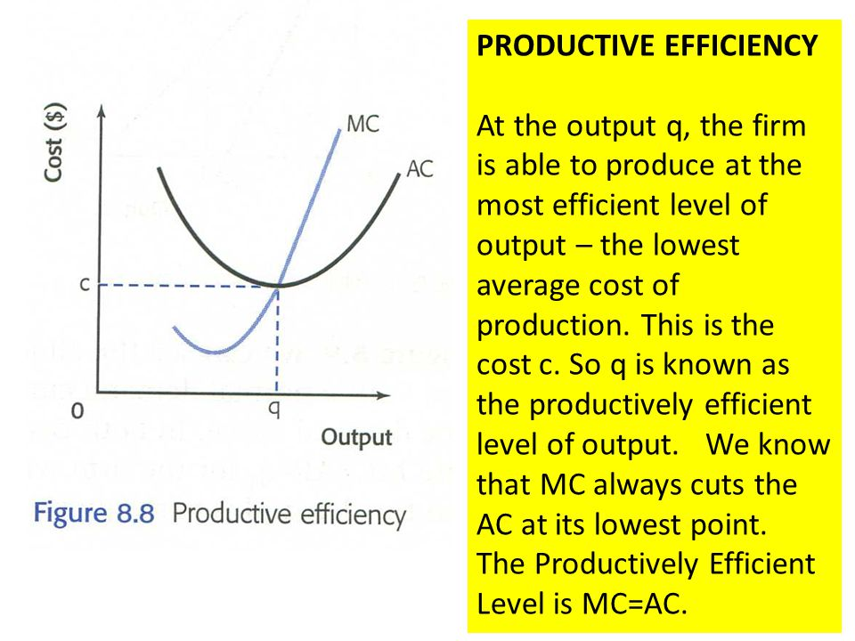 PRODUCTIVE EFFICIENCY