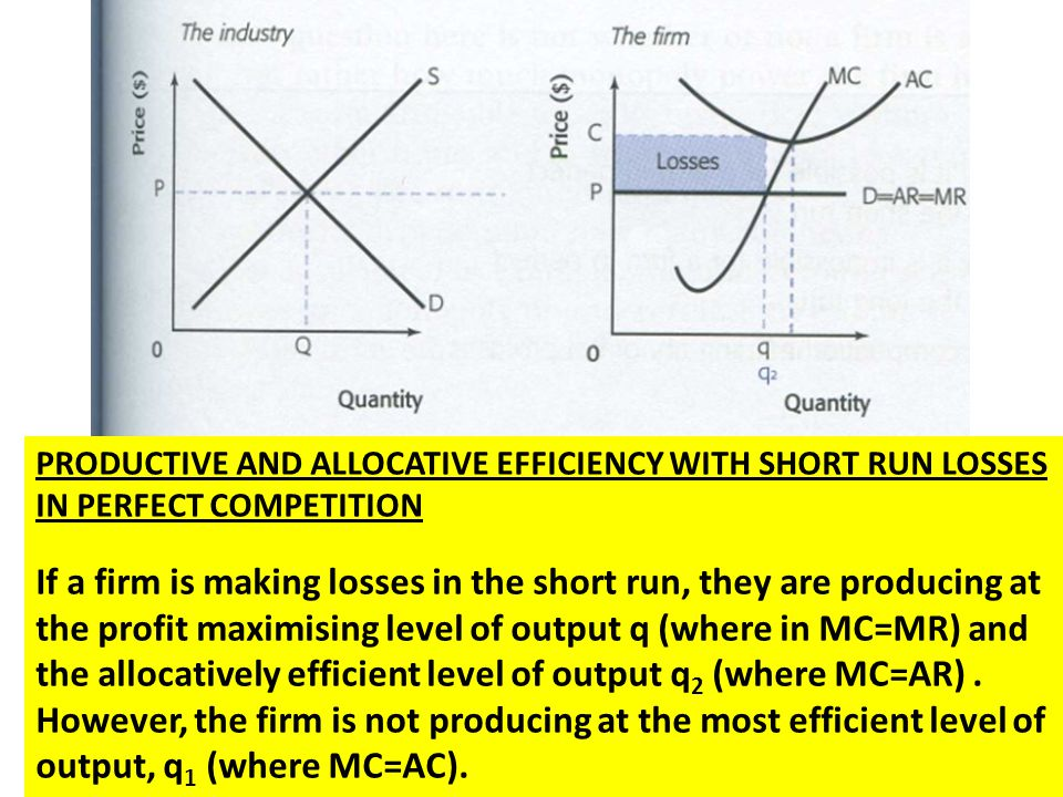 PRODUCTIVE AND ALLOCATIVE EFFICIENCY WITH SHORT RUN LOSSES IN PERFECT COMPETITION