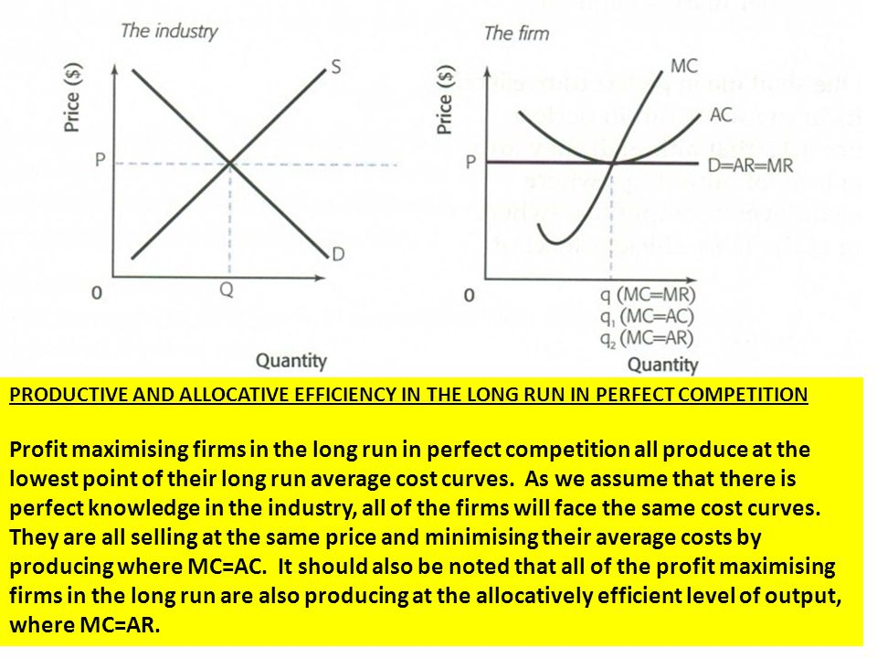 PRODUCTIVE AND ALLOCATIVE EFFICIENCY IN THE LONG RUN IN PERFECT COMPETITION