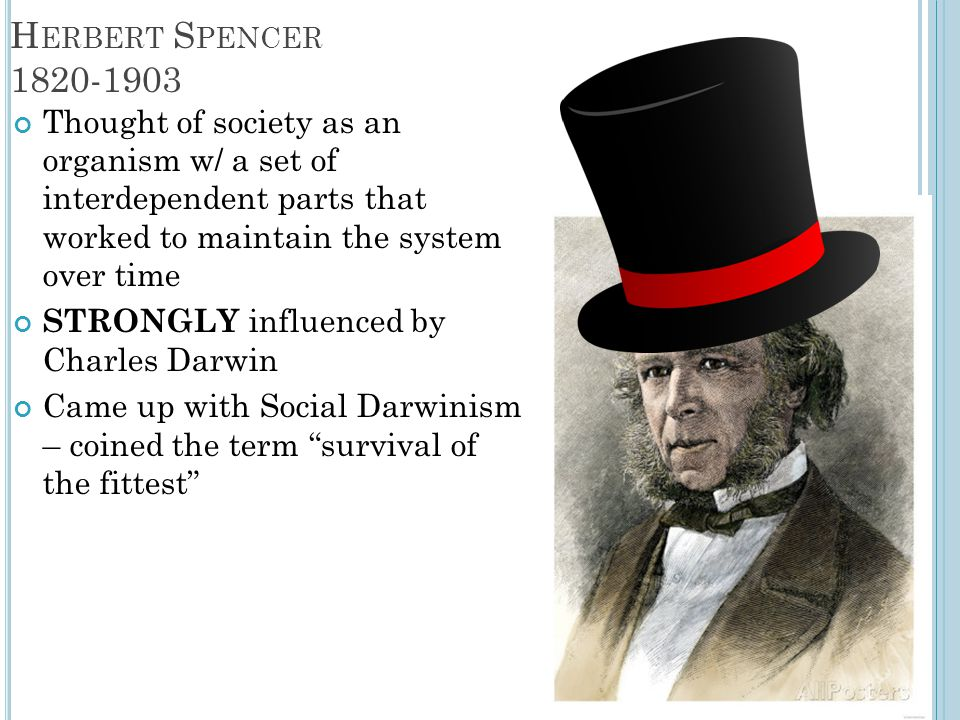Herbert Spencer 1820-1903 Thought of society as an organism w/ a set of interdependent parts that worked to maintain the system over time.