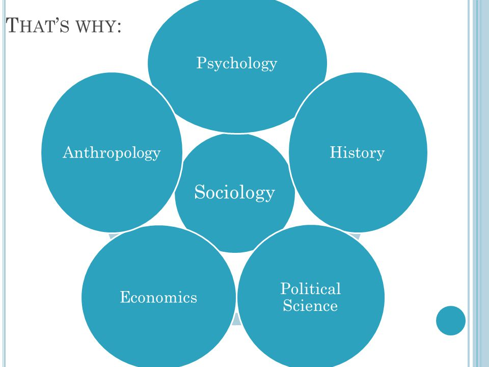 That's why: Sociology Psychology History Political Science Economics