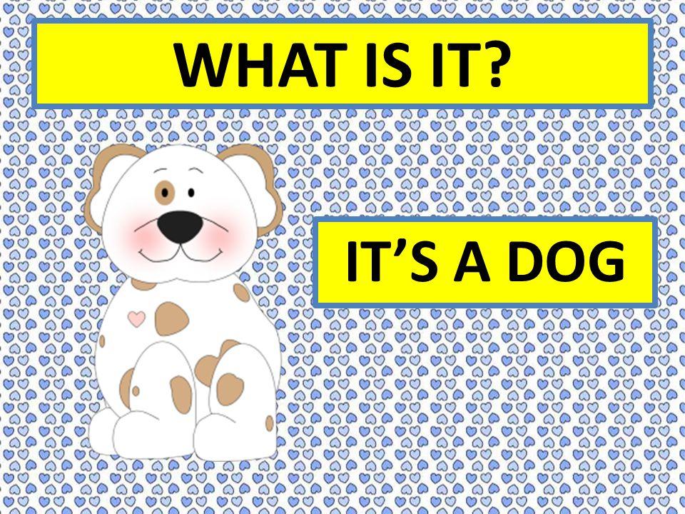 WHAT IS IT IT'S A DOG