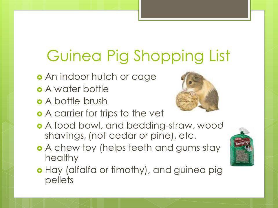Guinea Pig Shopping List