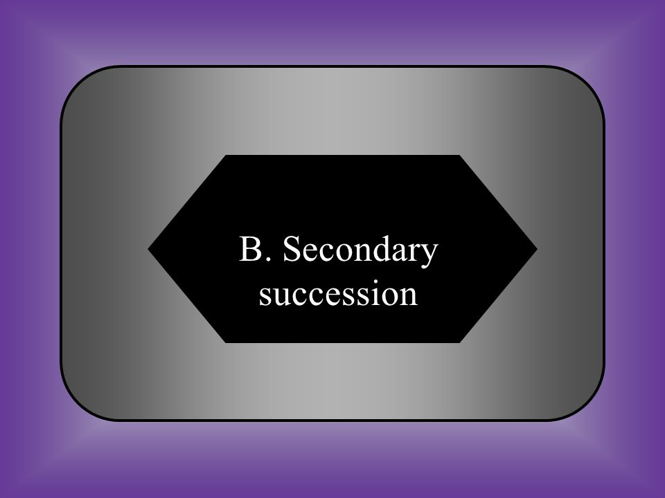 B. Secondary succession