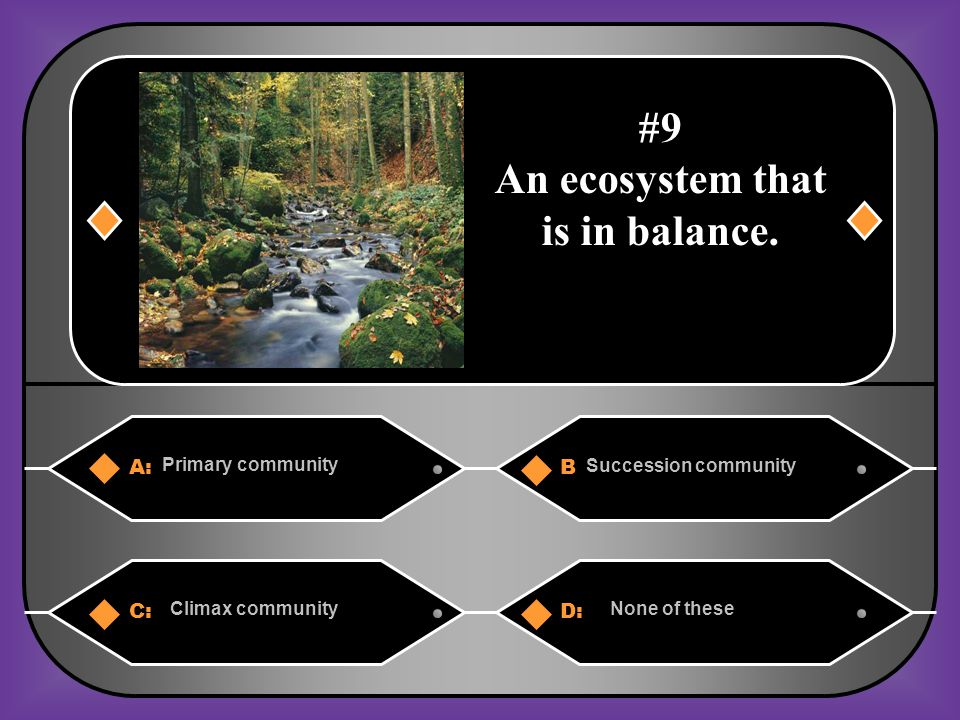 An ecosystem that is in balance.
