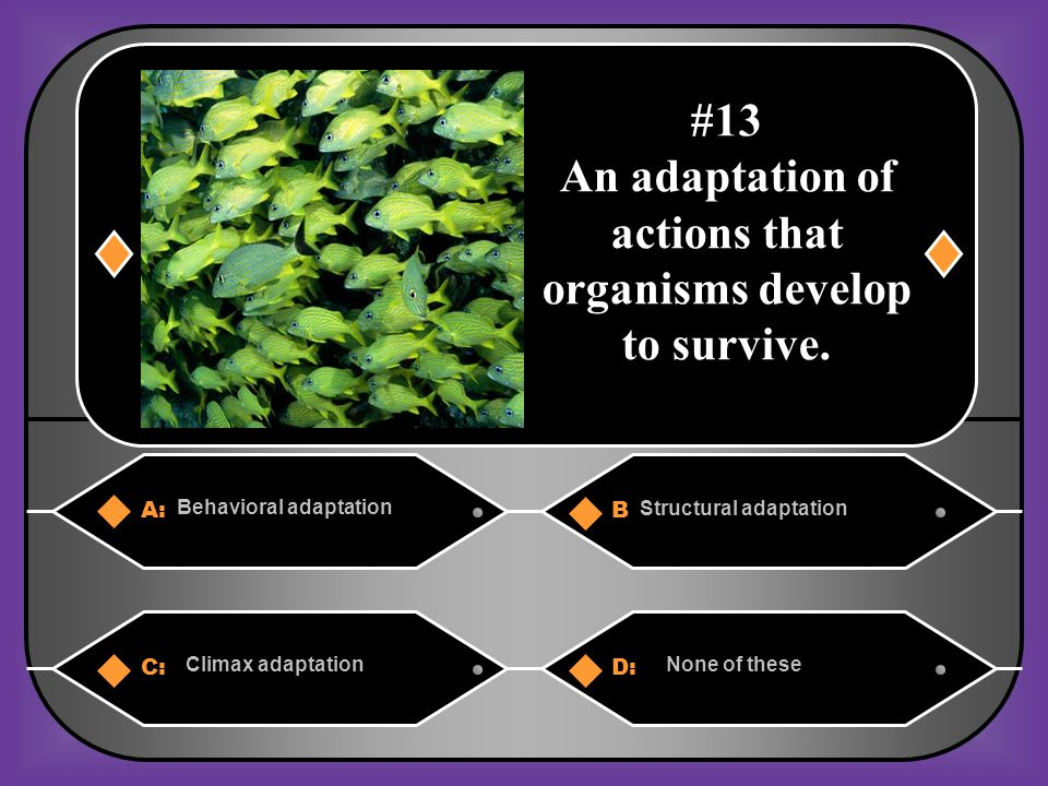 An adaptation of actions that organisms develop to survive.