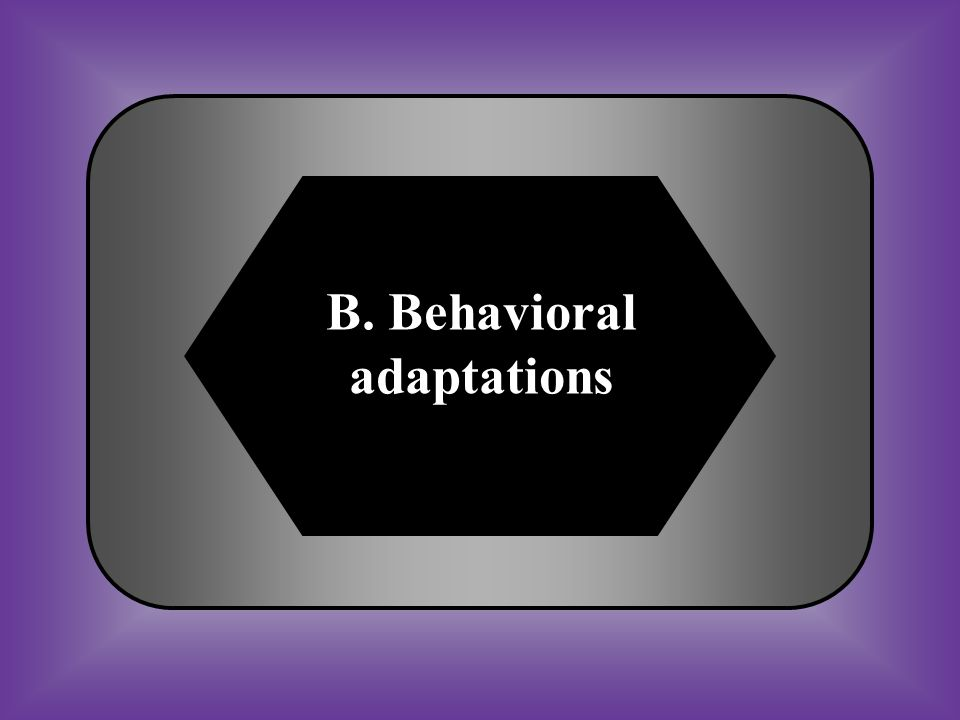 B. Behavioral adaptations