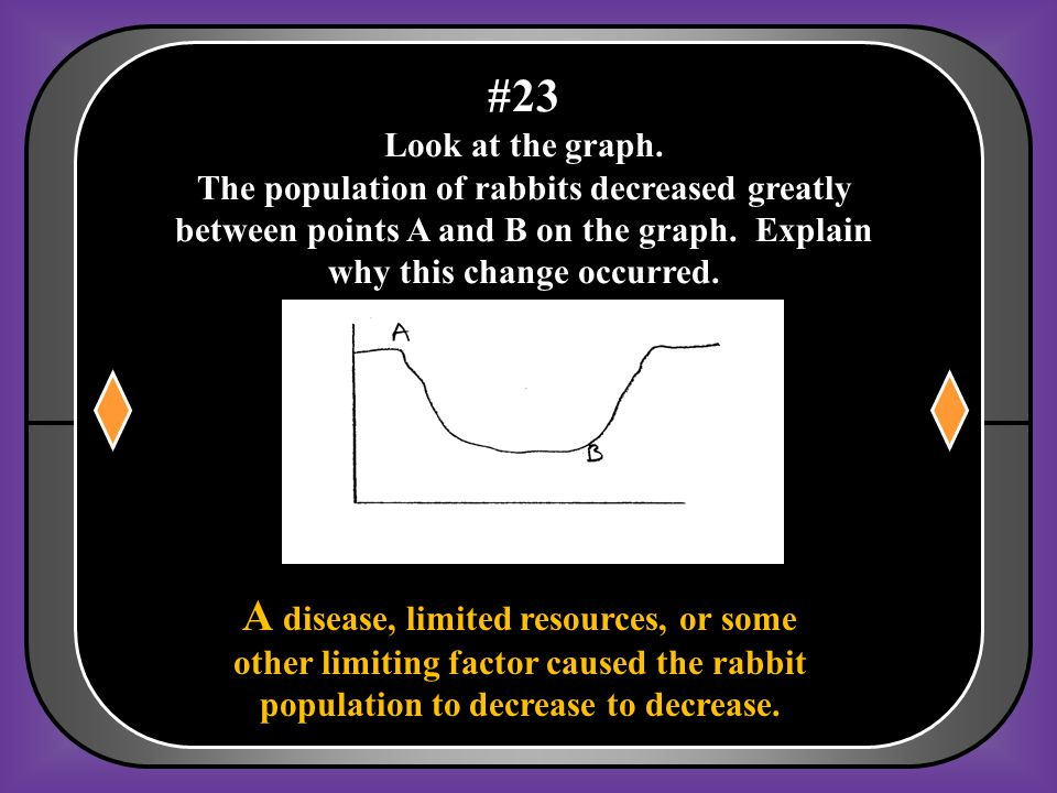 #23 Look at the graph. The population of rabbits decreased greatly between points A and B on the graph. Explain why this change occurred.