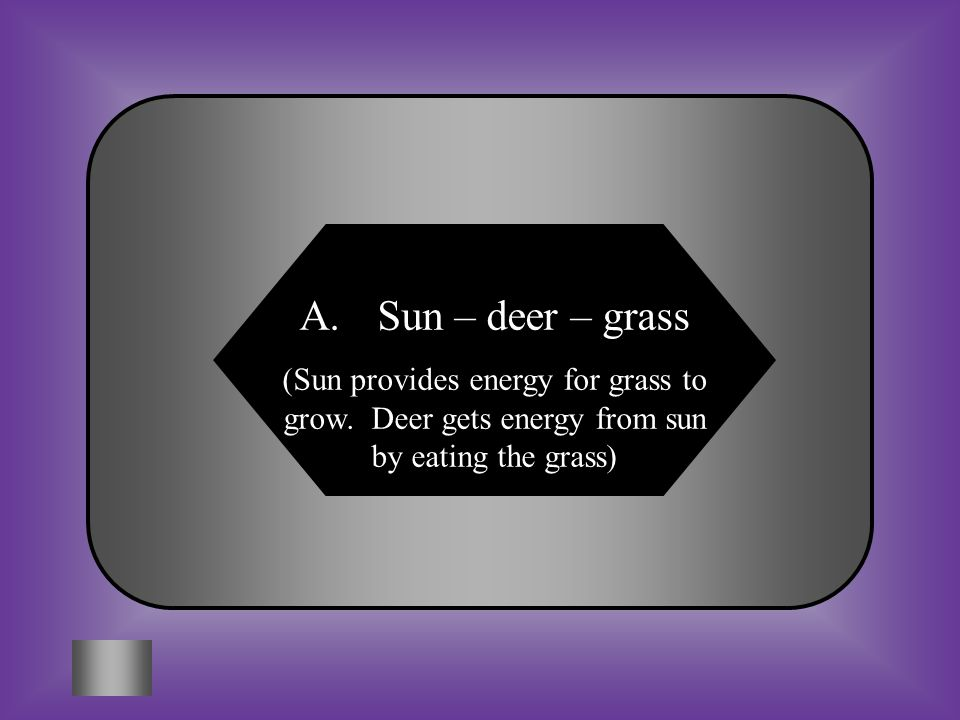 Sun – deer – grass (Sun provides energy for grass to grow.