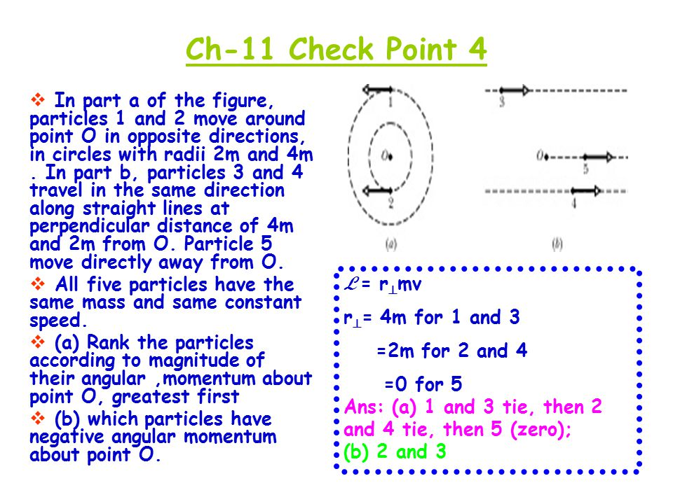 Ch-11 Check Point 4