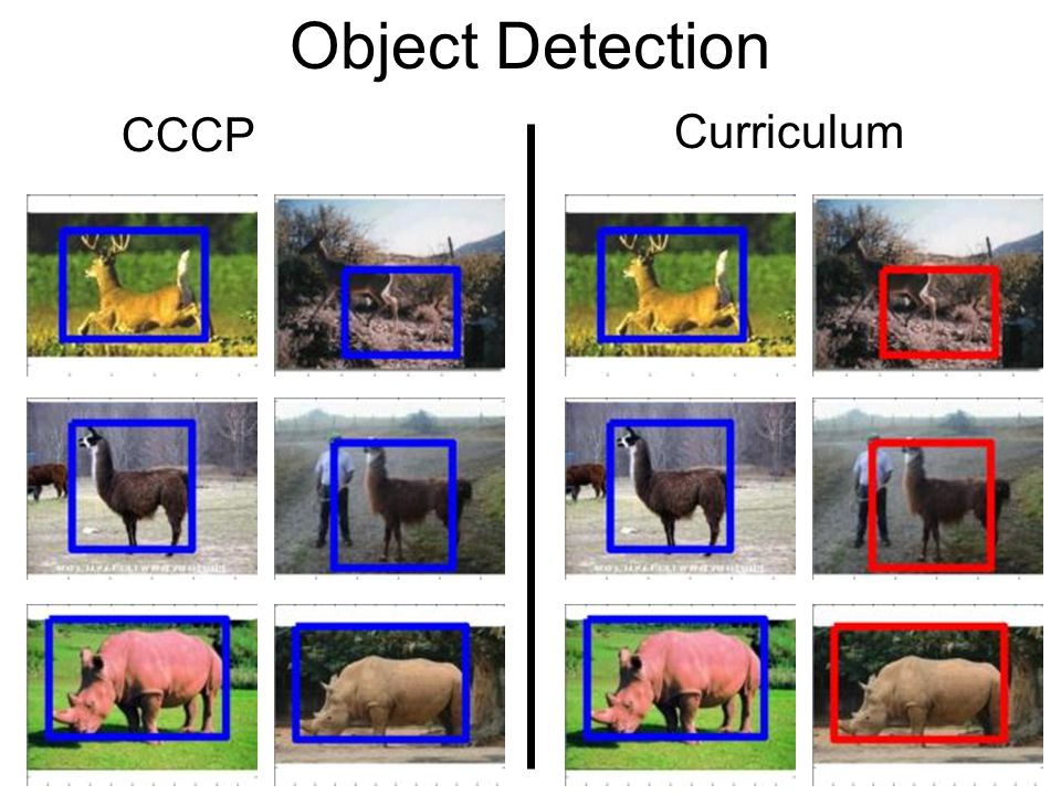 Object Detection CCCP Curriculum