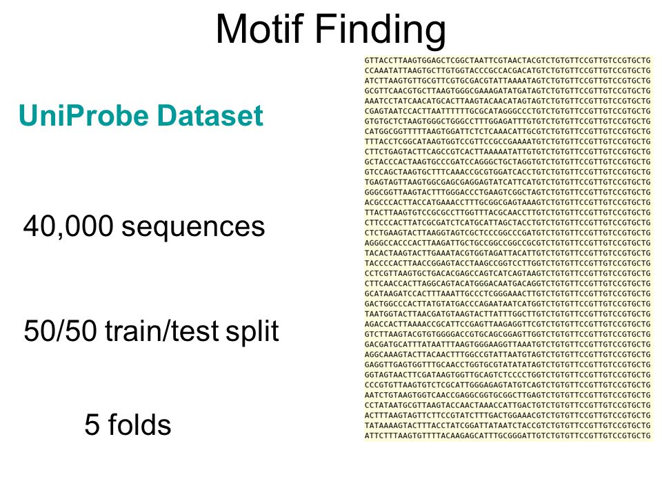 Motif Finding UniProbe Dataset 40,000 sequences 50/50 train/test split
