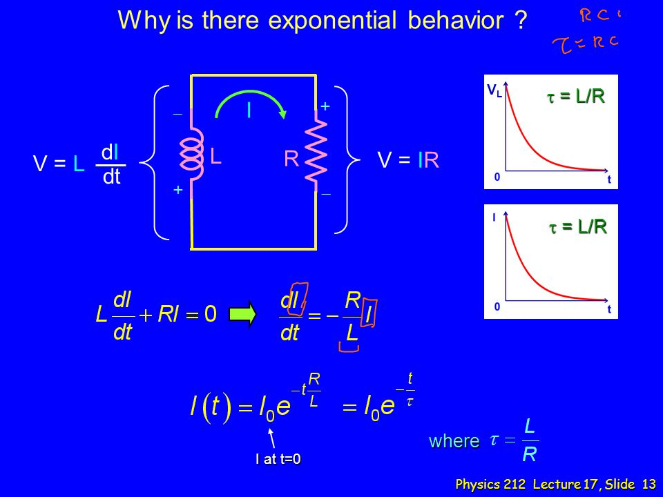 Why is there exponential behavior