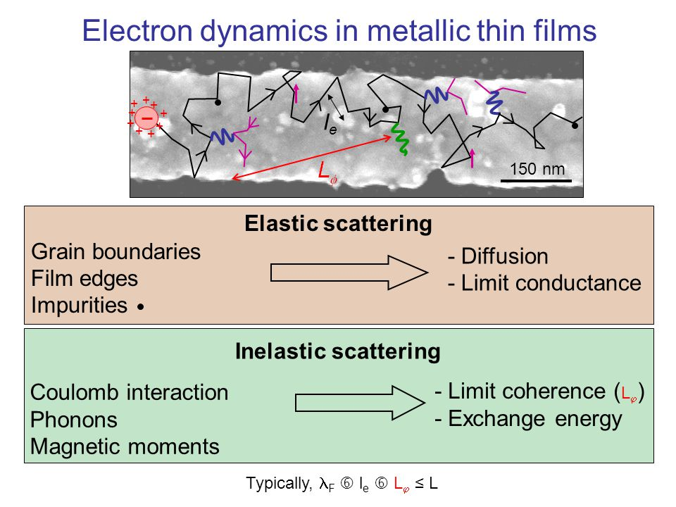 Electron dynamics in metallic thin films