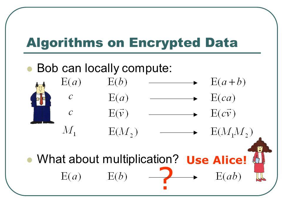 Algorithms on Encrypted Data