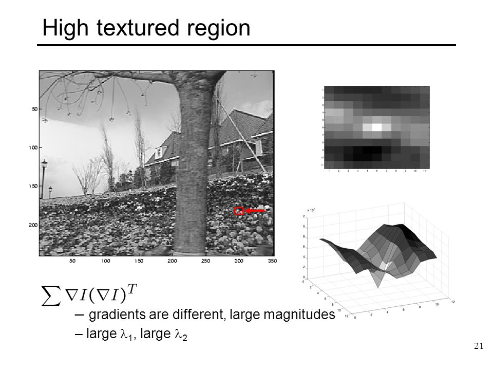 High textured region gradients are different, large magnitudes