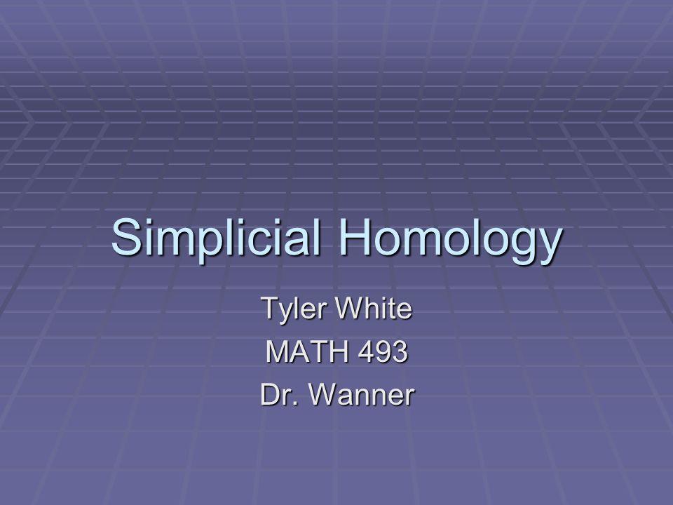 Tyler White MATH 493 Dr. Wanner