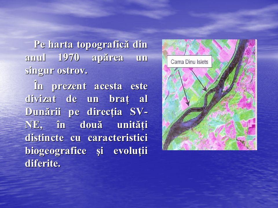 Pe harta topografică din anul 1970 apărea un singur ostrov.