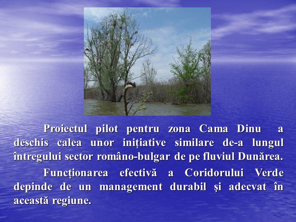 Proiectul pilot pentru zona Cama Dinu a deschis calea unor iniţiative similare de-a lungul întregului sector româno-bulgar de pe fluviul Dunărea.