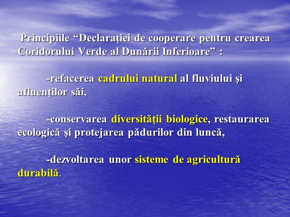 Principiile Declaraţiei de cooperare pentru crearea Coridorului Verde al Dunării Inferioare : -refacerea cadrului natural al fluviului şi afluenţilor săi, -conservarea diversităţii biologice, restaurarea ecologică şi protejarea pădurilor din luncă, -dezvoltarea unor sisteme de agricultură durabilă.