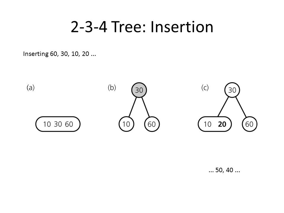 2-3-4 Tree: Insertion Inserting 60, 30, 10, 20 ... ... 50, 40 ...