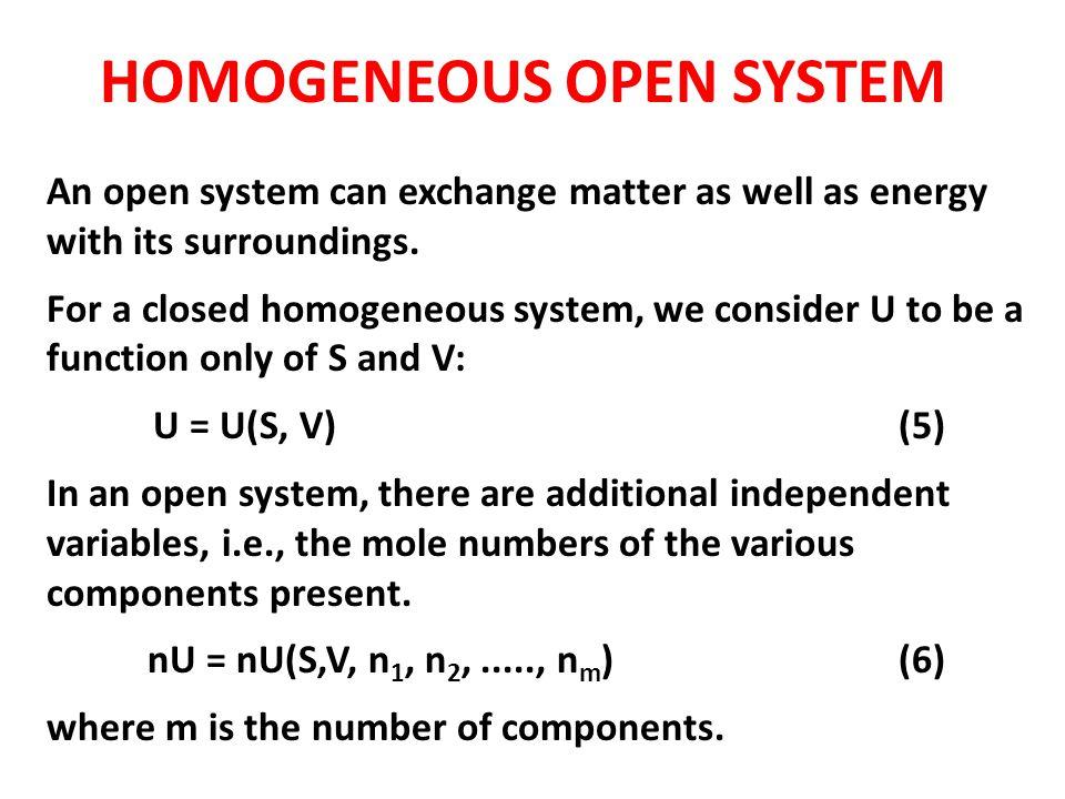 HOMOGENEOUS OPEN SYSTEM
