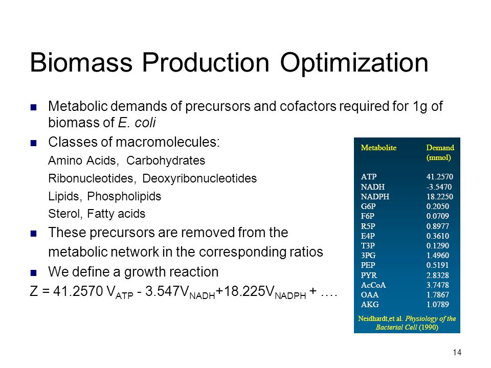 Biomass Production Optimization