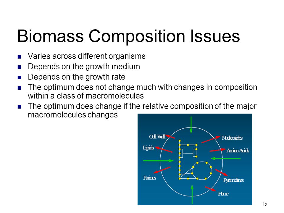 Biomass Composition Issues
