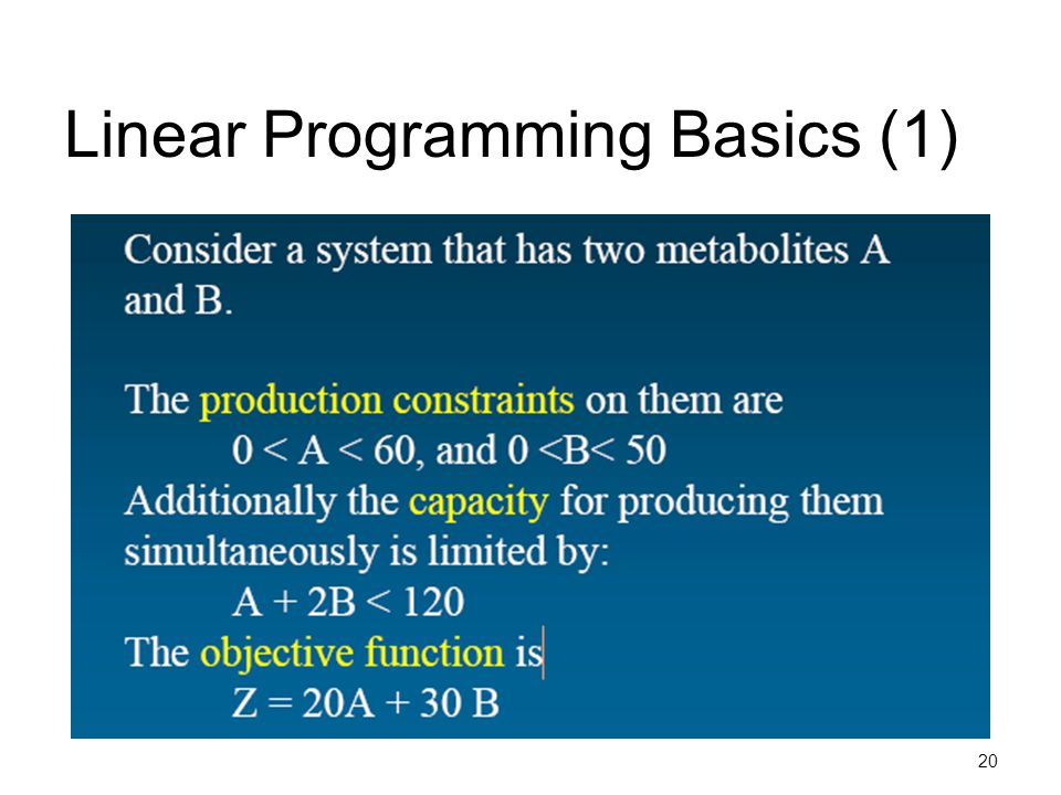 Linear Programming Basics (1)