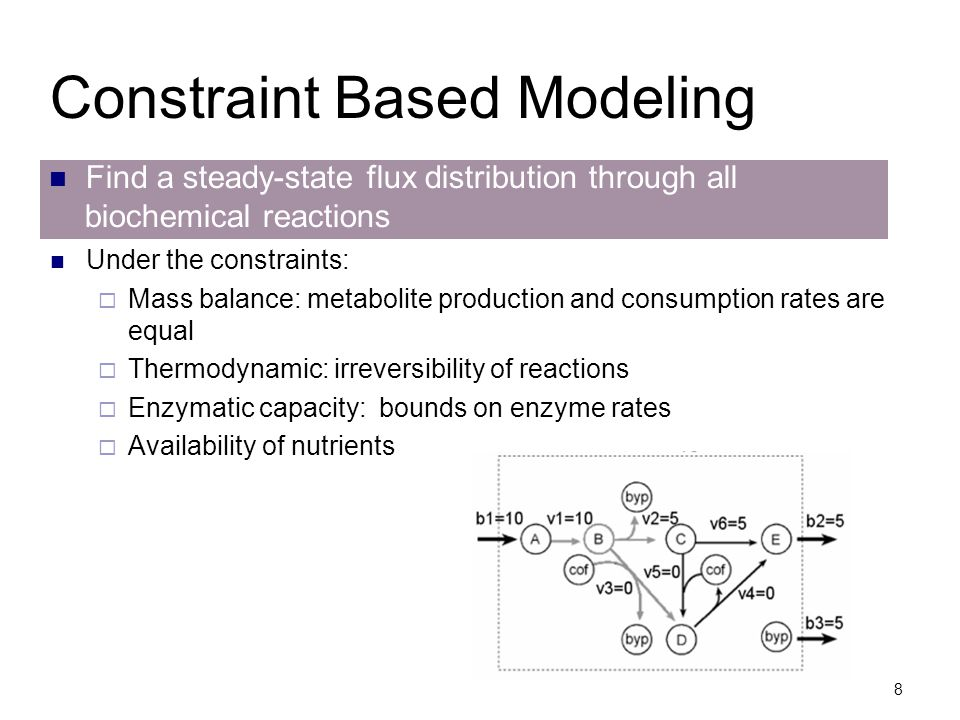 Constraint Based Modeling