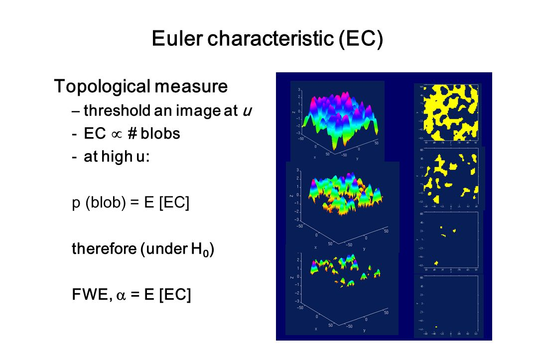 Euler characteristic (EC)